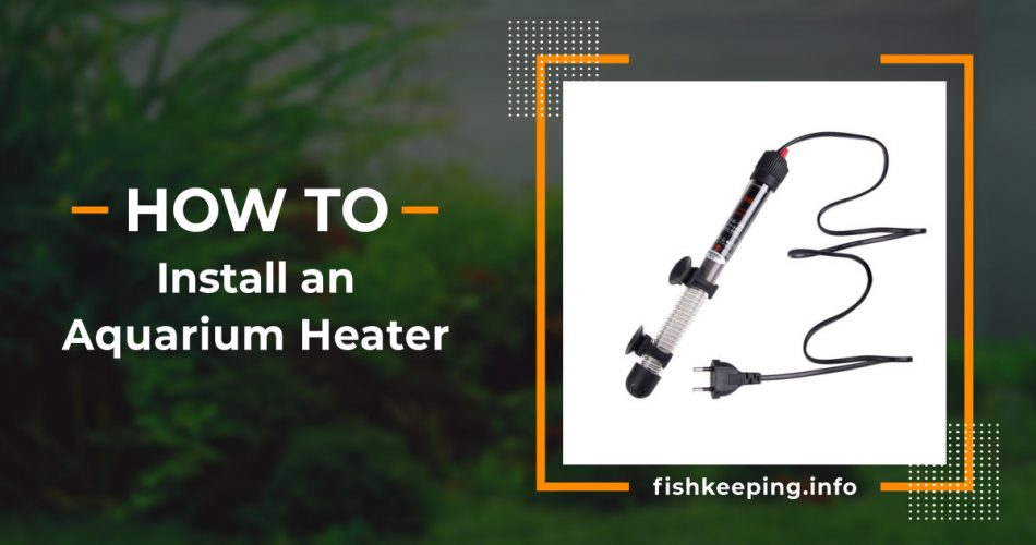 How to install an aquarium heater banner by en.fishkeeping.info